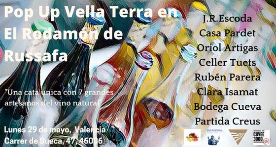 Muestra de vinos orgánicos en Valencia